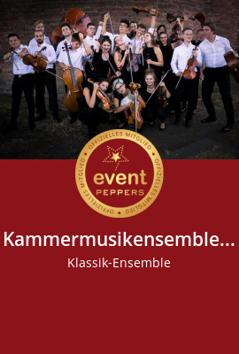 Ensemble/Musikgruppe, Klassik-Ensemble