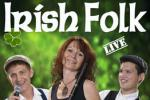 Irish Folk Band Woodwind & Steel