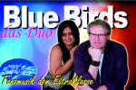 DUO - BLUE BIRDS