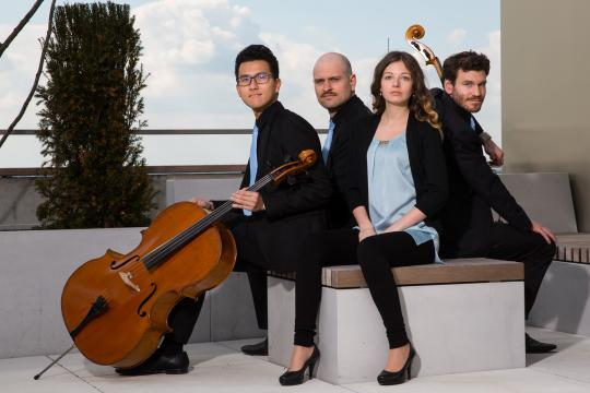 Arcis Cello Quartett