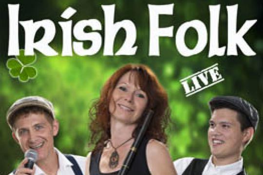 Irish Folk Band Woodwind & Steel